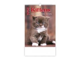 Nástěnný kalendář Kittens/Katzenbabys/Koťátka/Mačičky 2020