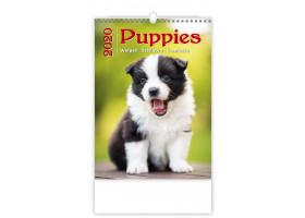 Nástěnný kalendář Puppies/Welpen/Štěňátka/Šteniatka 2020