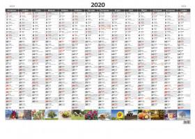 Plánovací roční mapa A1 obrázková 2020