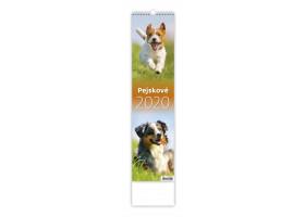 Nástěnný kalendář Pejskové 2020