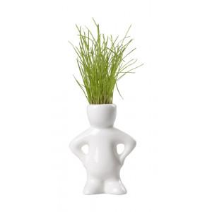 Keramický květináč se semínky trávy, bílá